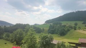 Waldblick, Apartments  Baiersbronn - big - 41