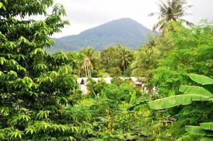Jungle Garden Bungalows