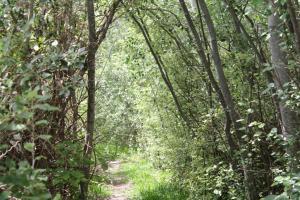 El Remanso, Fogadók  Capilla del Monte - big - 30