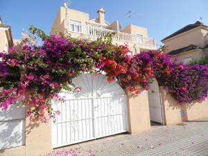 obrázek - Villa La Zenia