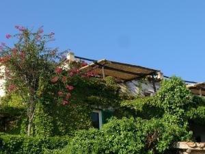 Appartamenti Salato, Апартаменты  Тропеа - big - 14