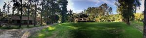 Pousada Solar dos Vieiras, Гостевые дома  Juiz de Fora - big - 41