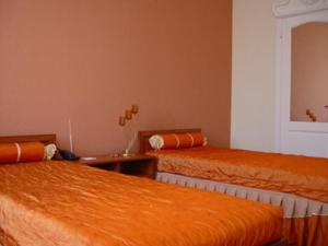 Отель Астория - фото 7