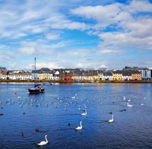 Crescent Close, Apartmány  Galway - big - 24
