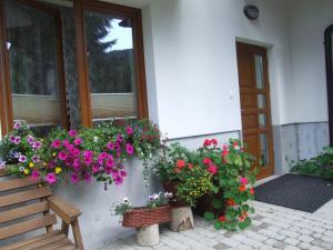Pokoje i apartamenty pod Jaworzyną w Koninkach