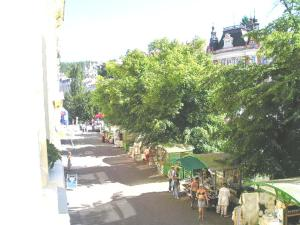 Apartment Sofie, Appartamenti  Karlovy Vary - big - 11