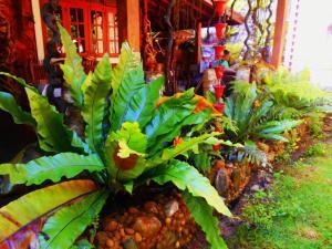 Sapphire Holiday Resort, Panziók  Ratnapura - big - 21