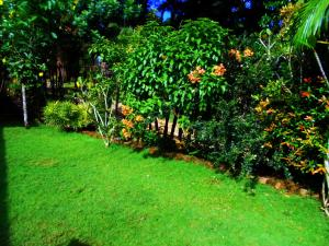 Sapphire Holiday Resort, Panziók  Ratnapura - big - 18
