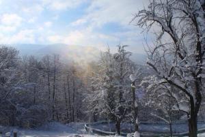 Turbaza Svetlyachok, Farm stays  Gornyy - big - 26