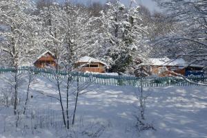 Turbaza Svetlyachok, Farm stays  Gornyy - big - 24