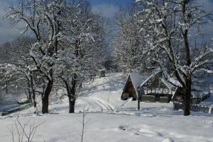 Turbaza Svetlyachok, Farm stays  Gornyy - big - 22