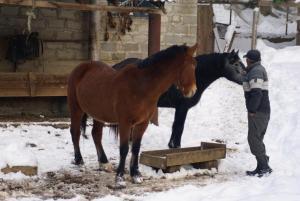 Turbaza Svetlyachok, Farm stays  Gornyy - big - 18