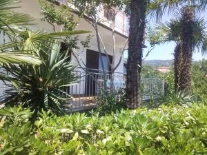 obrázek - Apartments Garden I
