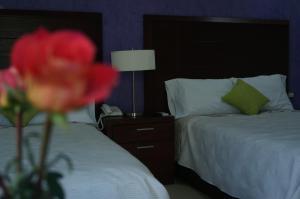 Hotel Casa Palomino Discount