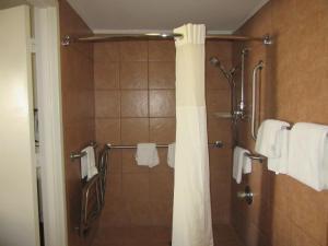 Quality Inn Fort Jackson, Отели  Колумбия - big - 12
