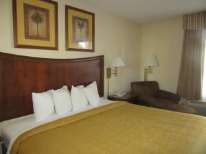 Quality Inn Fort Jackson, Отели  Колумбия - big - 7