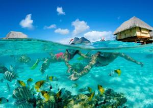 Bora Bora Pearl Beach Resort & Spa, Курортные отели  Бора-Бора - big - 40