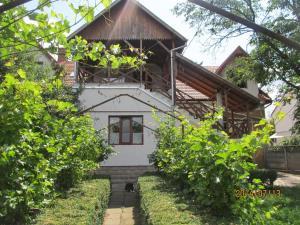 City center villa