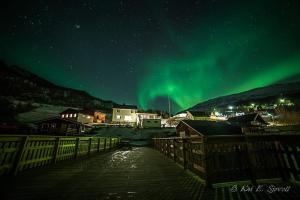 Elvegård Fjordcamp