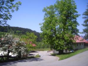 Ferienwohnung Lindenhof, Apartmanok  Sankt Englmar - big - 11