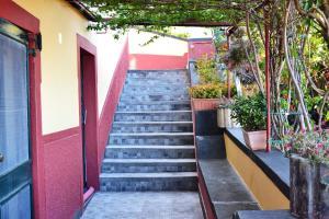 Casal São João Cottages, Vidiecke domy  Fajã da Ovelha - big - 16