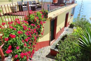 Casal São João Cottages, Vidiecke domy  Fajã da Ovelha - big - 17