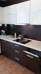 Centro apartamentai - Vingio apartamentai, Apartments  Vilnius - big - 38