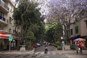 Duplex Penthouse Zona Rosa, Апартаменты  Мехико - big - 33