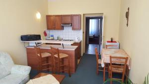 Apartment Sofie, Appartamenti  Karlovy Vary - big - 1