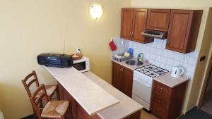 Apartment Sofie, Appartamenti  Karlovy Vary - big - 7