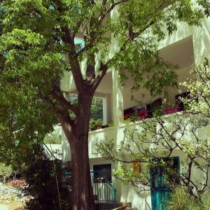 Apartments Lozina 的图像
