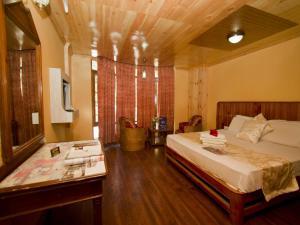 OYO Rooms Circuit House Manali
