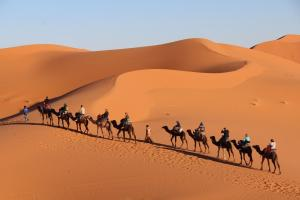 Auberge Kasbah Des Dunes