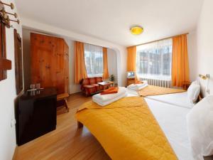 Hotel Alpin - 91 Bansko, Hotely  Bansko - big - 5
