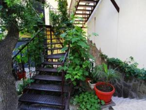 Mayak Guest House, Penziony – hostince  Haspra - big - 24