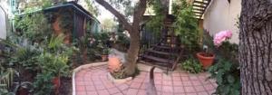 Mayak Guest House, Penziony – hostince  Haspra - big - 31