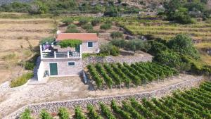 Holiday Home Vineyard house, Дома для отпуска  Бол - big - 1