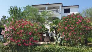 Guest House Villa Marlis