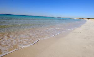 Colonia Beach House, Appartamenti  Colonia Sant Jordi - big - 17