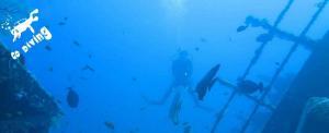 Go Diving