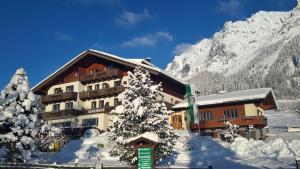 Alpenhof, Отели типа «постель и завтрак»  Рамзау-ам Дахштайн - big - 25