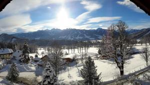 Alpenhof, Отели типа «постель и завтрак»  Рамзау-ам Дахштайн - big - 29