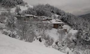 Gergana Houses