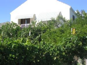 Guest House Kola