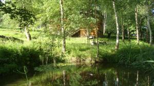 Загородный отель Дом у Озера - фото 10