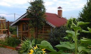 Гостевой дом Байкал - фото 3