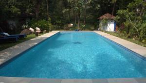 The Secret Garden Goa, Проживание в семье  Saligao - big - 45