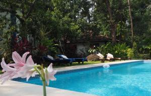 The Secret Garden Goa, Проживание в семье  Saligao - big - 50