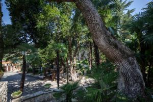 Парк-Отель Гора Баграта - фото 12