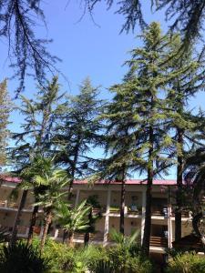 Парк-Отель Гора Баграта - фото 27